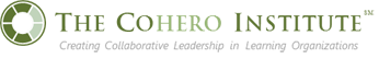 The CoHero Institute for Collaborative Change Leadership